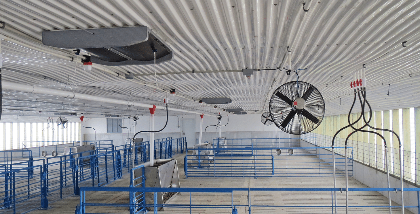 Swine Division Inlets Pvc Shutters And Flooring Systems