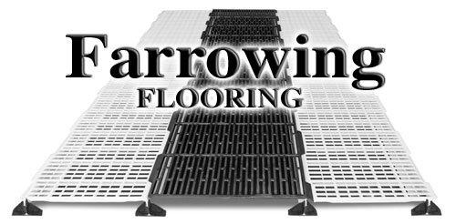 Swine Farrowing Floor