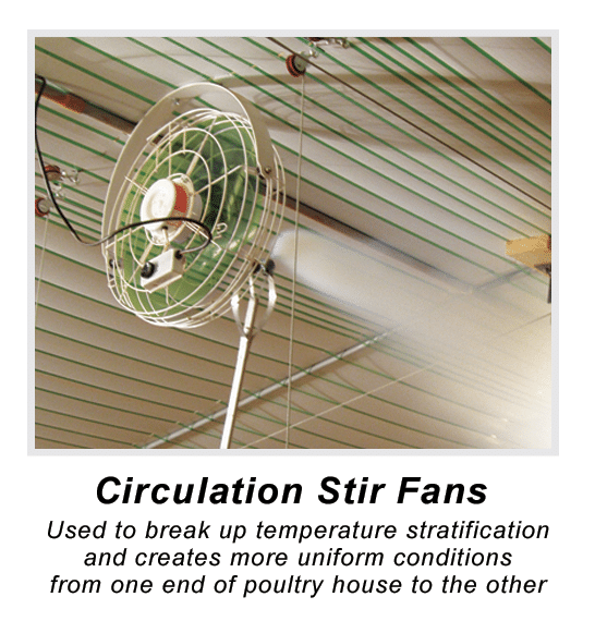 Circulation Stir Fans in Poultry House