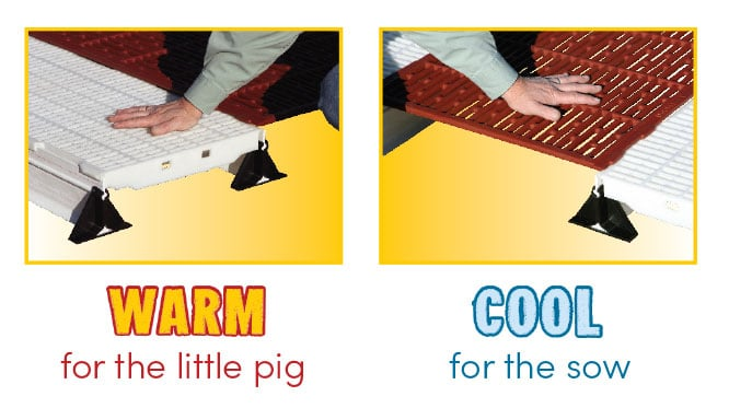 Filter-eeze-Plastic Flooring Warm for Little Pigs and Cast Iron Cool for Sows